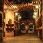 Conoce la bodega de vino más larga del mundo