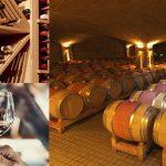 Cómo se eligen las bodegas para vino