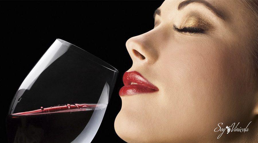 cómo reconocer un buen vino copa