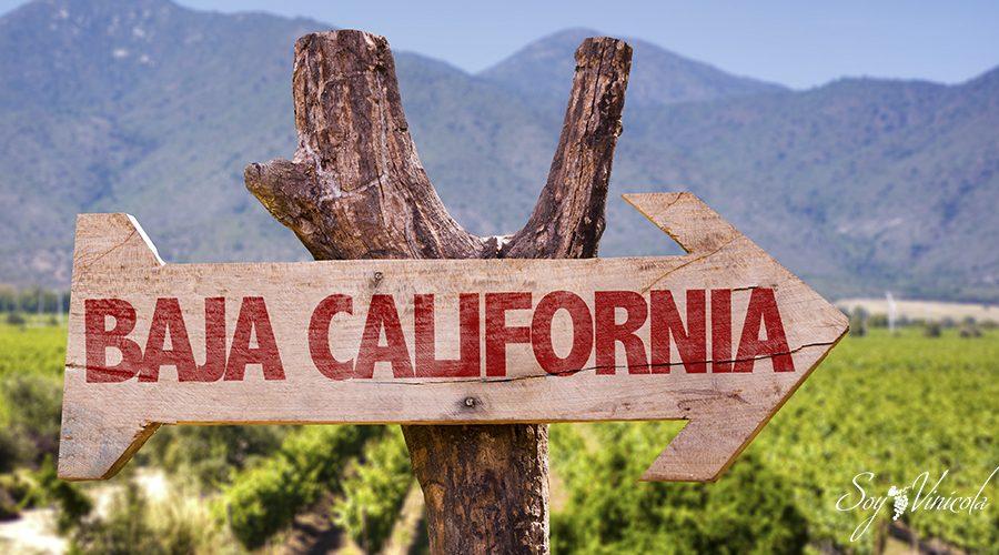 los viñedos de Baja California ruta