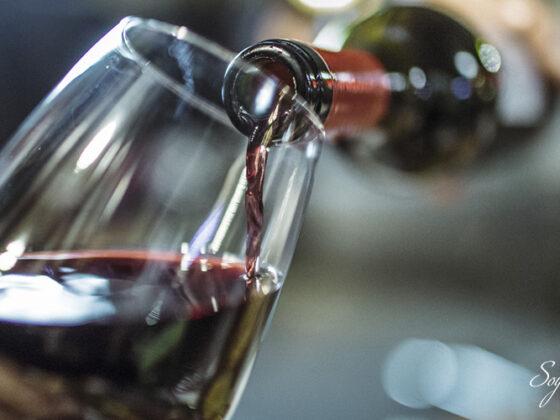 que son los taninos vino