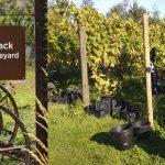 Los mejor viñedos biodinámicas y orgánicos
