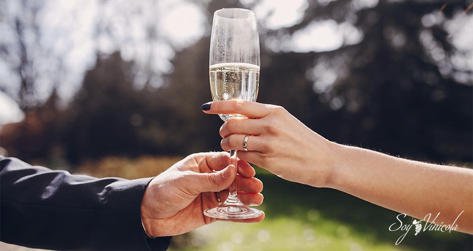 fiesta de degustación de vinos mesa