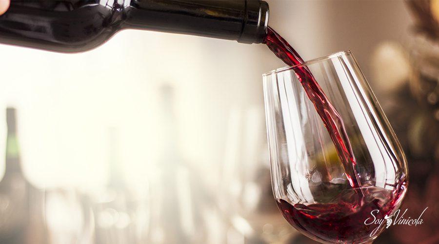 astringencia del vino características