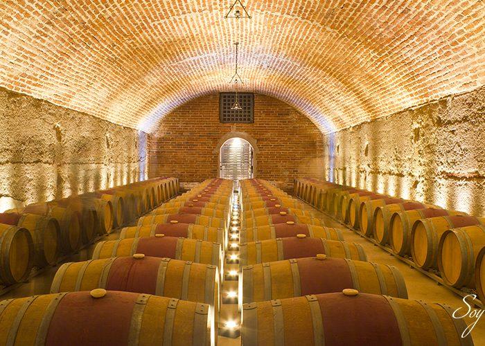Conoce las bodegas de vino más modernas del mudo