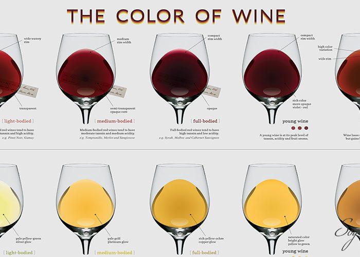 ¿Cómo el color afecta en tu percepción del sabor del vino?
