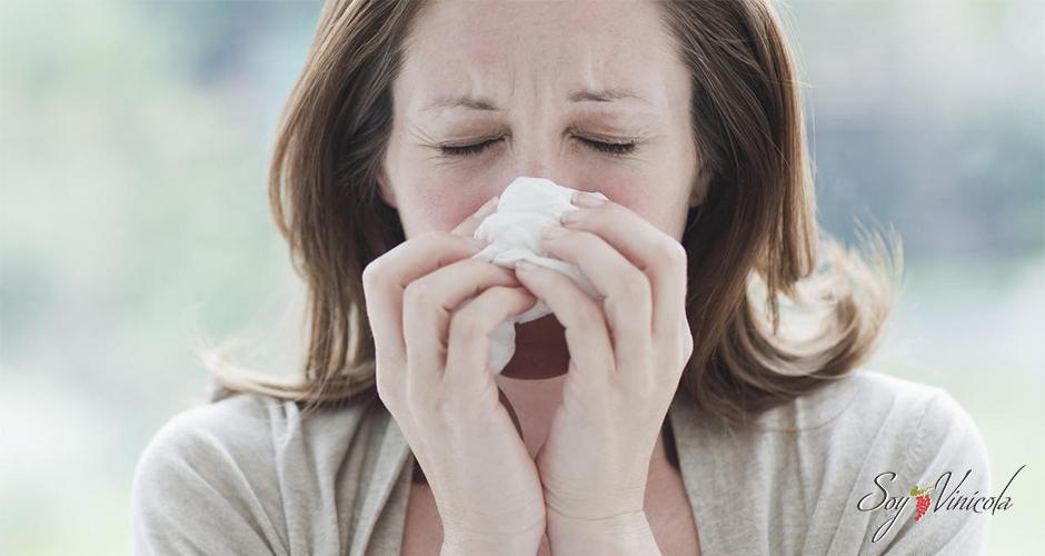 ¿Vino contra la gripa? Aquí te decimos por qué intentarlo