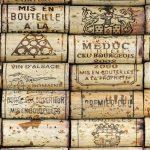 Picpoul, una de las rutas vinícolas menos populares