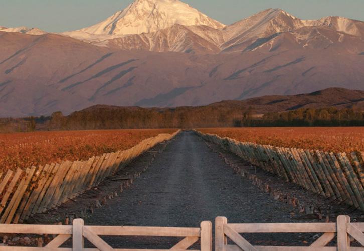 Maridaje Malbec Terraza Andes Soy Vinicola