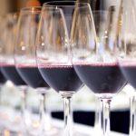 Cómo catar un vino paso a paso