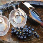 Alicante Bouschet una uva para los amantes del vino tinto