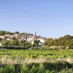 ¿Qué tanto sabes de Châteauneuf du Pape?