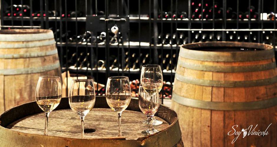 Envejecimiento del vino: Joven, Roble, Crianza, Reserva, Gran Reserva
