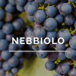 Características de los vinos Nebbiolo