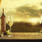 Los mejores vinos mexicanos del 2018