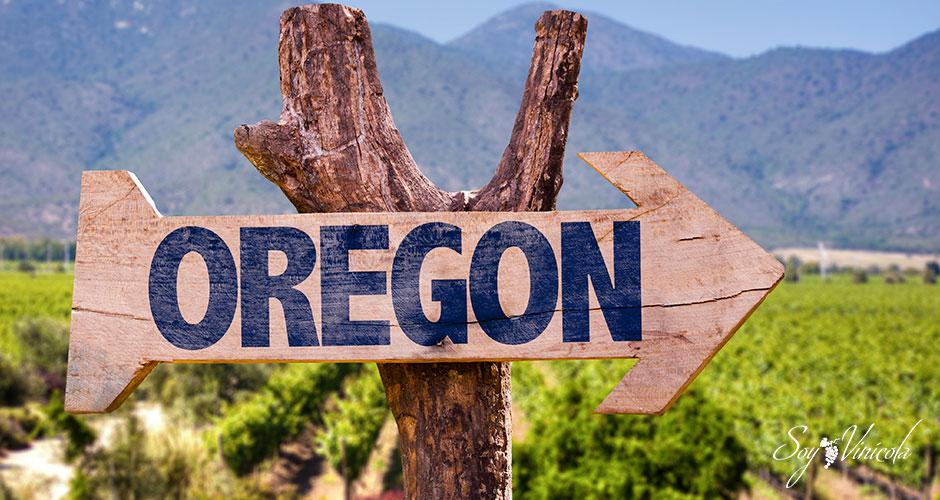 Oregon es el nuevo paraíso de los vinos en EUA