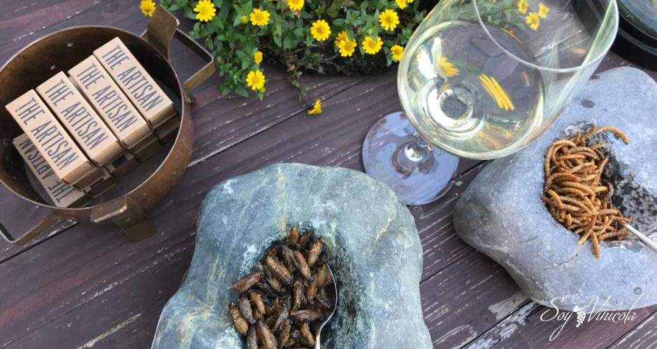 Los insectos, el nuevo maridaje de vino