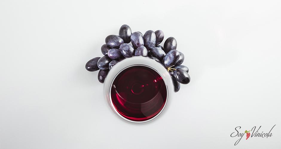 Conociendo los sabores en los vinos