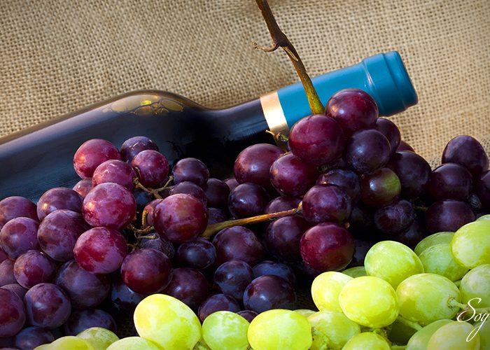 Claves a nivel de Somellier para aprender sobre el vino
