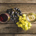 Cómo se fabrica el vino tinto y el blanco