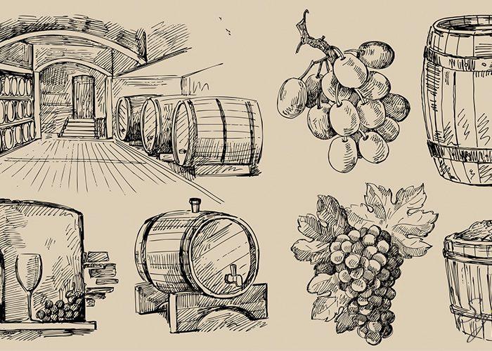 Los vinos de Italia que debes conocer si eres principiante